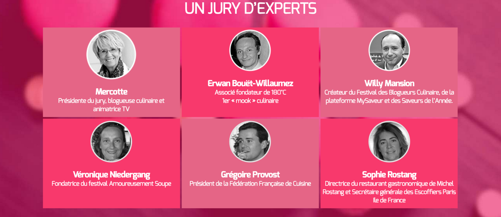 La composition du Jury d'experts
