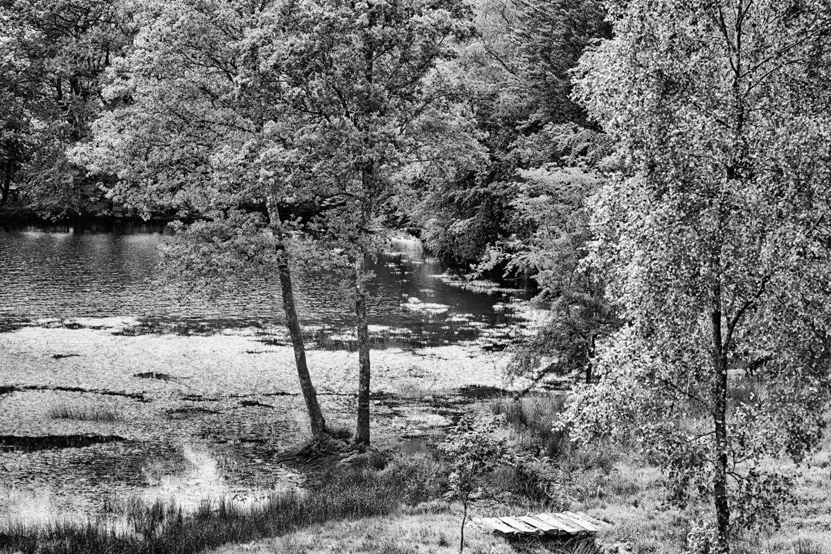 Le Chemin des Moines de Grandmont . Monts d'Ambazac . Haute Vienne