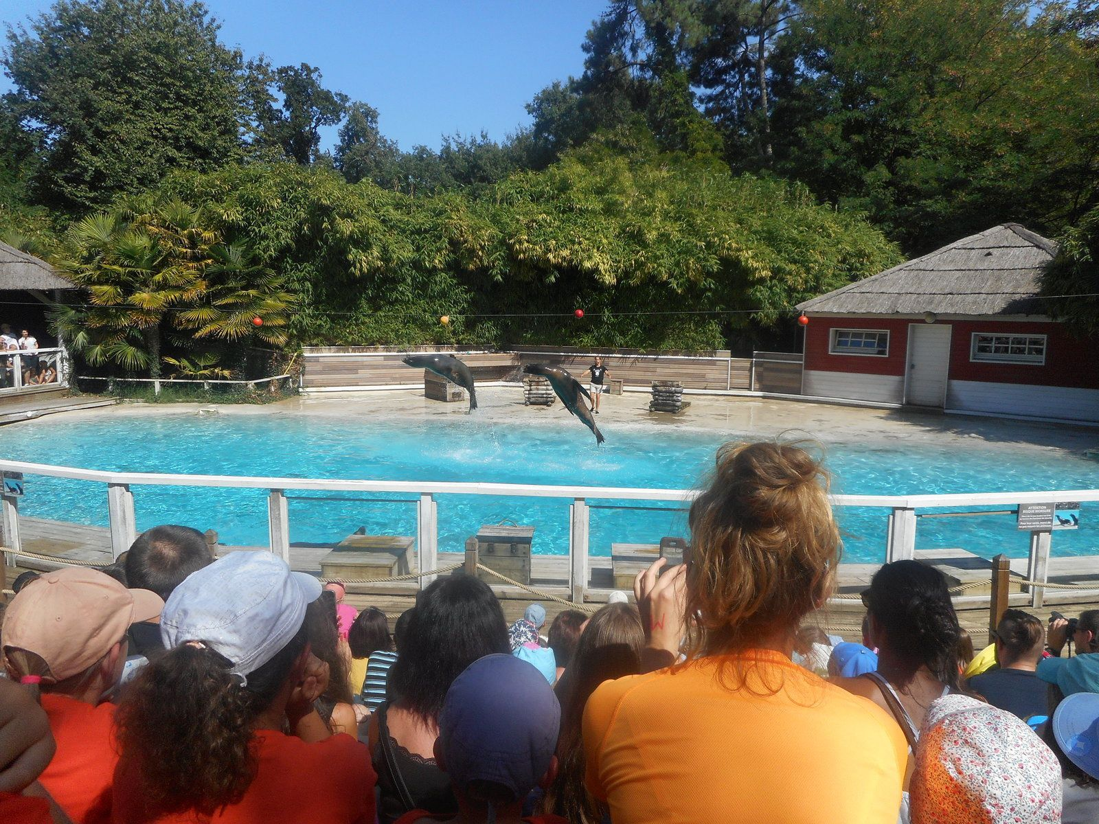 Rencontre zoo