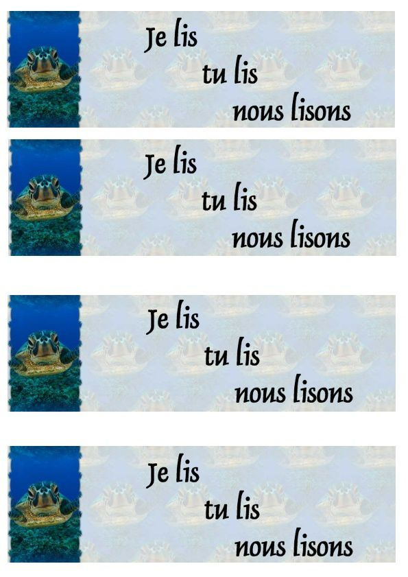 Marque-pages - signets Tortue