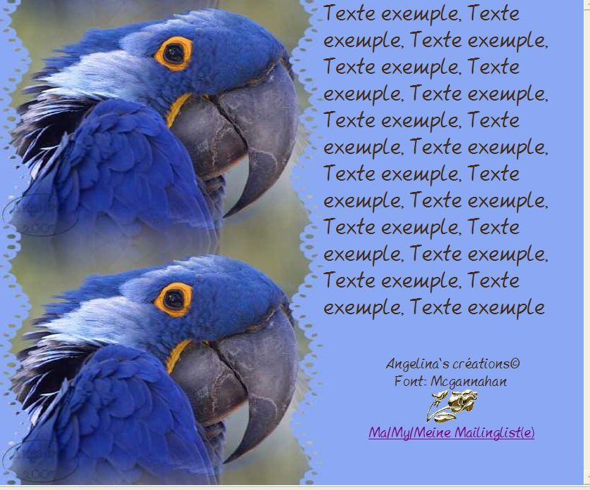 Perroquet Incredimail &amp&#x3B; Papier A4 h l &amp&#x3B; outlook &amp&#x3B; enveloppe &amp&#x3B; 2 cartes A5 &amp&#x3B; signets 3 langues  parrot_1_bg_020203
