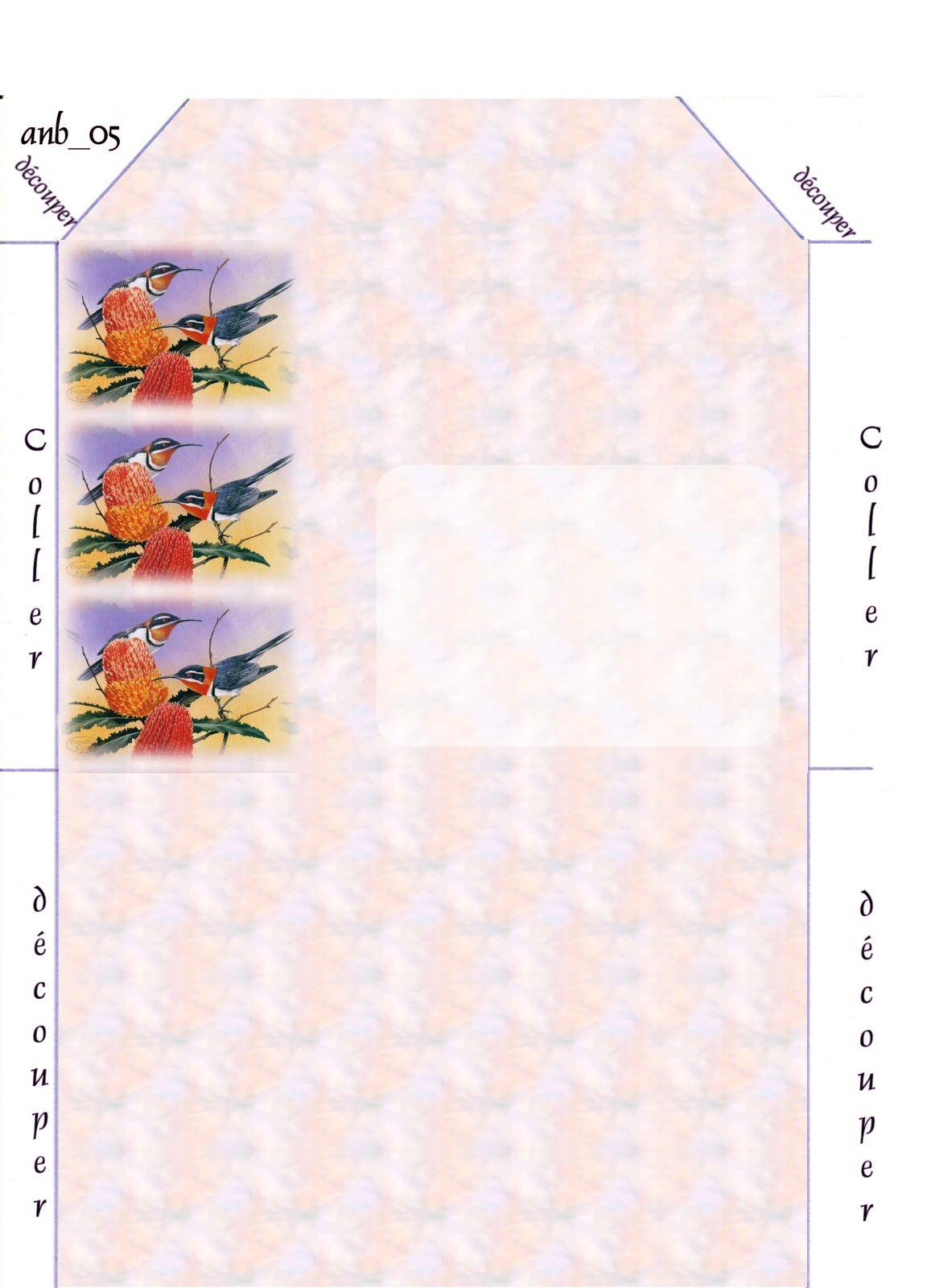 Oiseaux Incredimail &amp&#x3B; Papier A4 h l &amp&#x3B; outlook &amp&#x3B; enveloppe &amp&#x3B; 2 cartes A5 &amp&#x3B; signets 3 langues    kb_shepherd_eric_12_western_spinebills