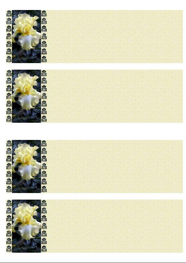 Iris jaune Incredimail &amp&#x3B; Papier A4 h l &amp&#x3B; outlook &amp&#x3B; enveloppe &amp&#x3B; 2 cartes A5 &amp&#x3B; signets 3 langues     after_the_rain