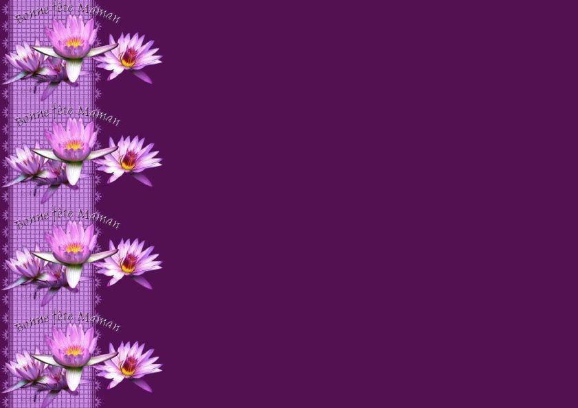 Bonne fête Maman Nénuphar saphiere flower5 Incredimail &amp&#x3B; outlook &amp&#x3B; A4 h l &amp&#x3B; enveloppe &amp&#x3B; 2 cartes A5 &amp&#x3B; signets bonne_fete_maman_fleurs_saphiere_flower_5