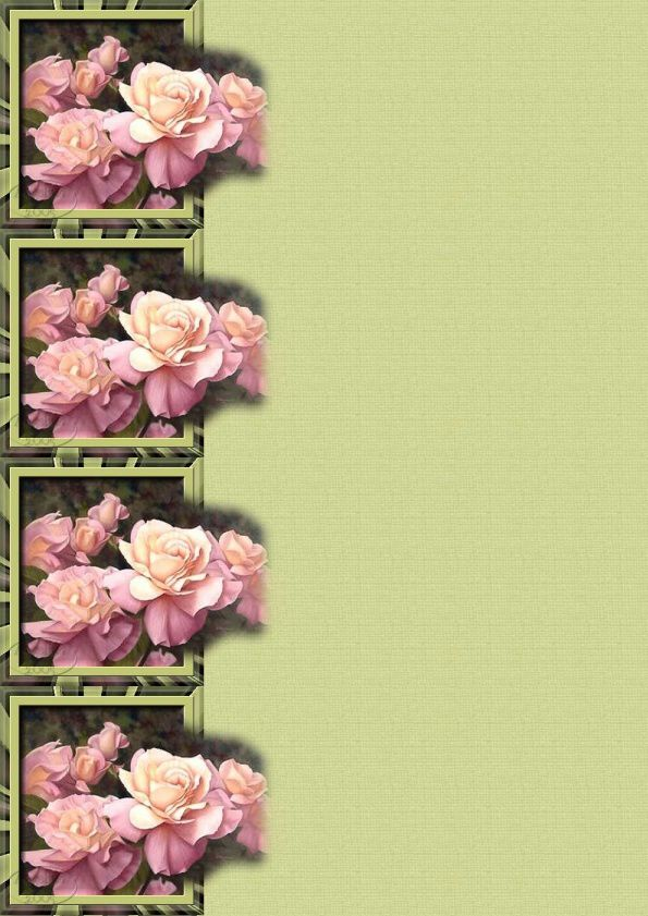 Roses sdc Incredimail &amp&#x3B; Papier A4 h l &amp&#x3B; outlook &amp&#x3B; enveloppe &amp&#x3B; 2 cartes A5 &amp&#x3B; signets 3 langues     bloomingimg_sortant_du_cadre