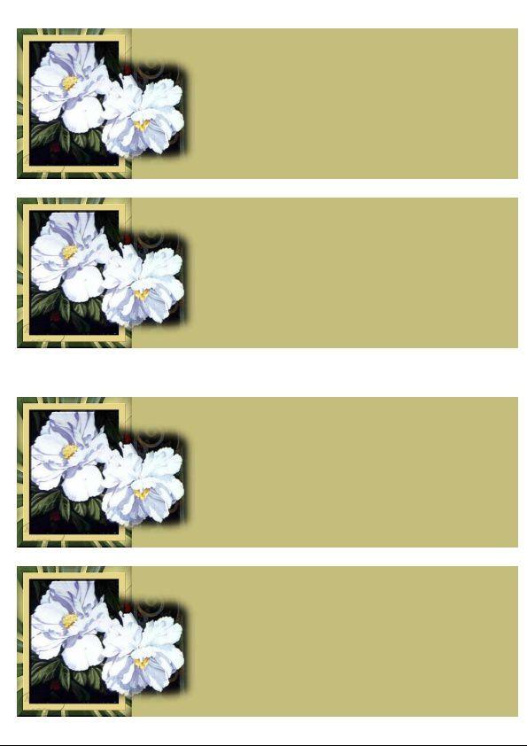 Fleurs blanches sdc fond vert Incredimail &amp&#x3B; Papier A4 h l &amp&#x3B; outlook &amp&#x3B; enveloppe &amp&#x3B; 2 cartes A5 &amp&#x3B; signets 3 langues   anitahoodless_gardenshow_991001_sortant_du_cadre