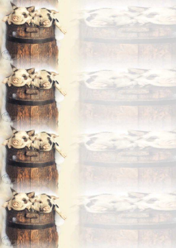 Cochons dans tonneau Incredimail &amp&#x3B; Papier A4 h l &amp&#x3B; outlook &amp&#x3B; enveloppe &amp&#x3B; 2 cartes A5 &amp&#x3B; signets 3 langues     cochons_1_9