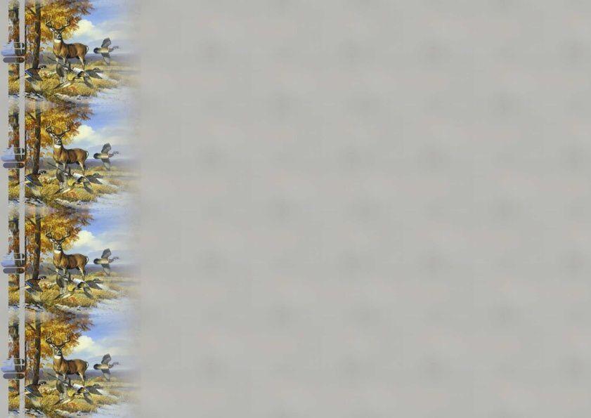 Cerf avec canards Incredimail &amp&#x3B; Papier A4 h l &amp&#x3B; outlook &amp&#x3B; enveloppe &amp&#x3B; 2 cartes A5 &amp&#x3B; signets 3 langues     an_buck_and_quail_snow_long