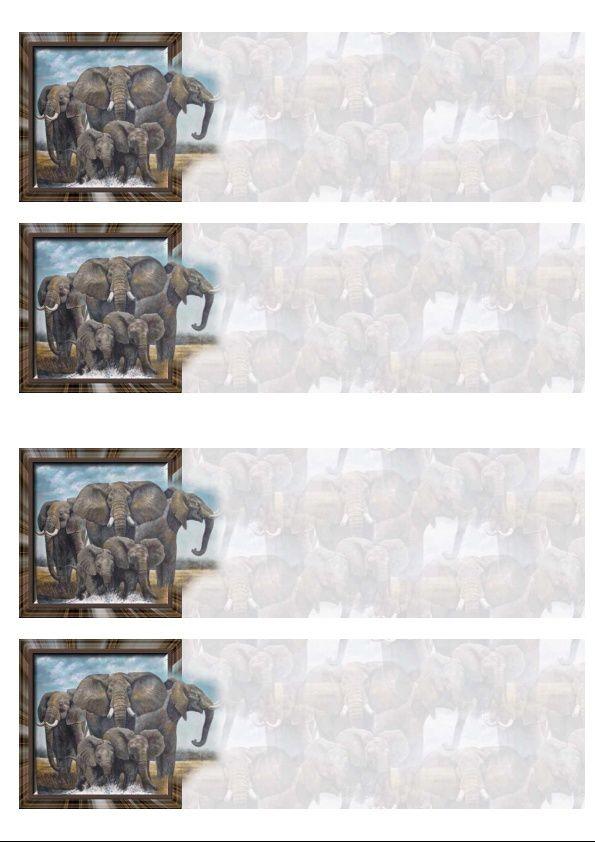 Eléphants sortant du cadre IM &amp&#x3B; Papier A4 h l &amp&#x3B; outlook &amp&#x3B; enveloppe &amp&#x3B; 2 cartes A5 &amp&#x3B; signets 3 langues     ele_large_sortant_du_cadre