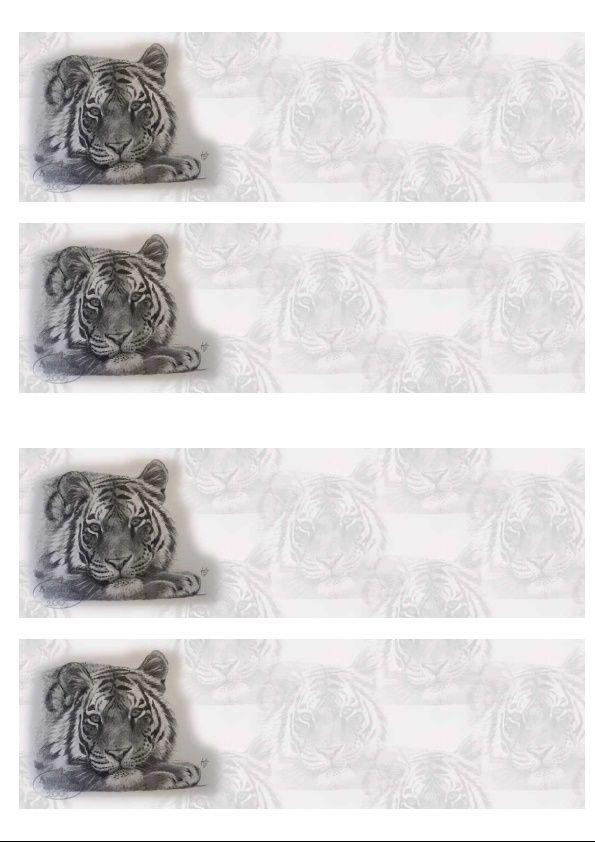 Tigre Incredimail &amp&#x3B; Papier A4 h l &amp&#x3B; outlook &amp&#x3B; enveloppe &amp&#x3B; 2 cartes A5 &amp&#x3B; signets 3 langues     restful_sketch_f