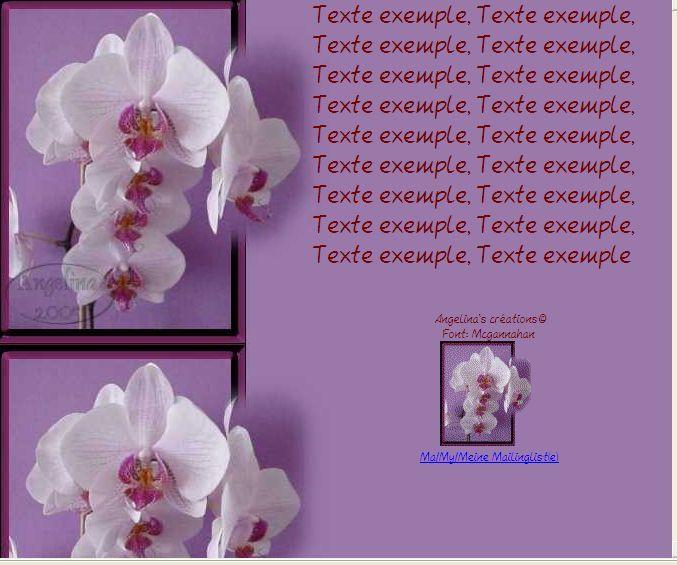Phalaenopsis Orchidée Incredimail &amp&#x3B; Papier A4 h l &amp&#x3B; outlook &amp&#x3B; enveloppe &amp&#x3B; 2 cartes A5 &amp&#x3B; signets 3 langues      436e597d525f0_sdc