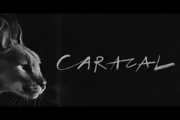 Album a venir: CARACAL de Disclosure.