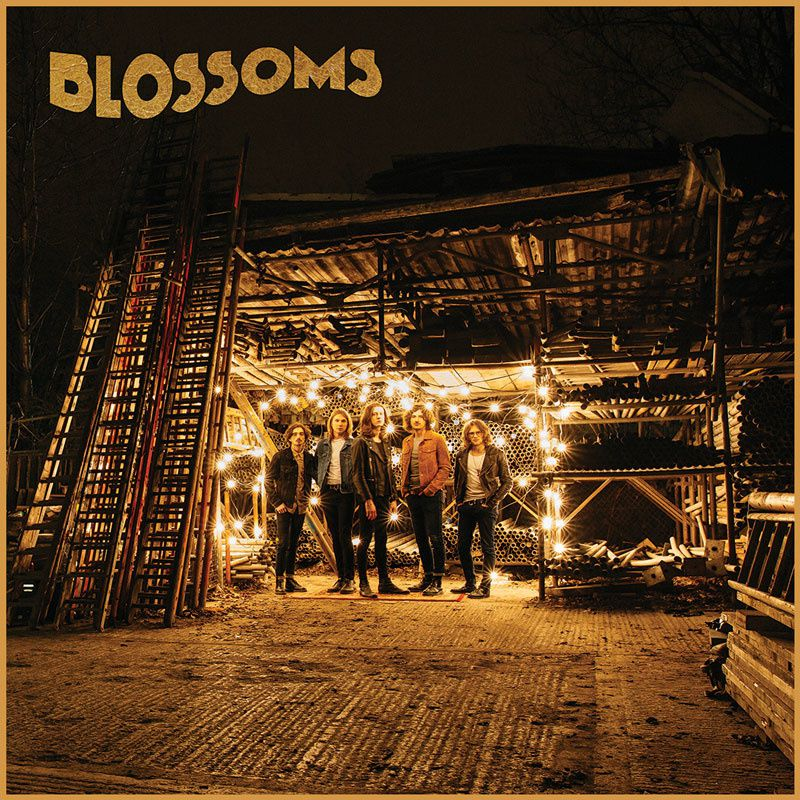 Nouveau Talent: Blossoms
