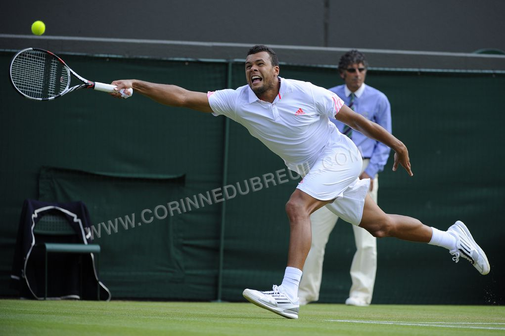 murray tsonga