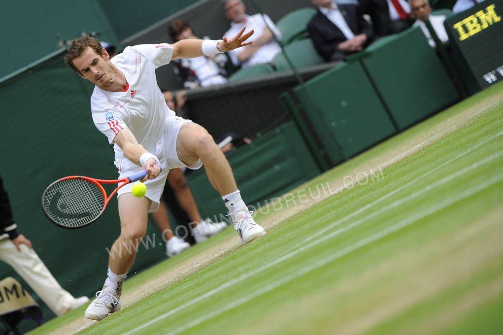 Murray-Tsonga, Federer-Djokovic!!!
