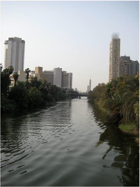 1988, Garden City , le Caire , El N.....m'a contacté , je dois revenir , je fais , plutôt bien ....!