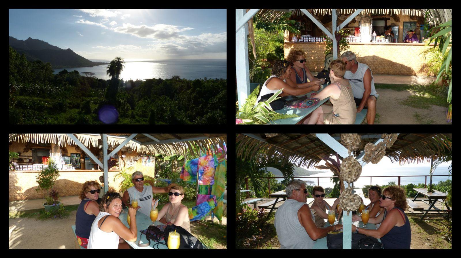 Arrêt au tropical garden sur le retour