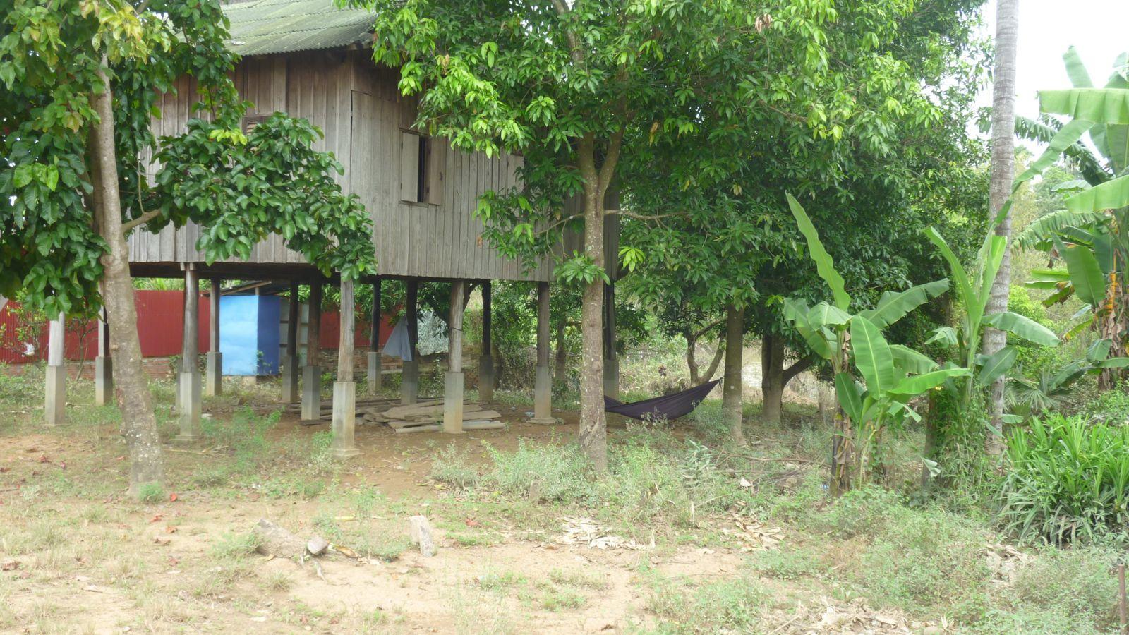 A Battambang, roule ma poule !