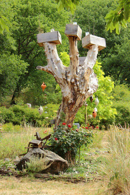 Au gré des sentiers, de nouvelles découvertes : le macérat de millepertuis qui se bonifie au soleil, et cet arbre étrange, là depuis si lontemps, qu'on le prétend Gardien du Jardin...