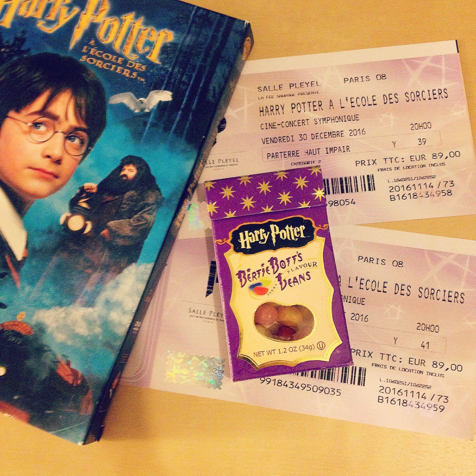 Harry Potter à l'école des sorciers en ciné-concert