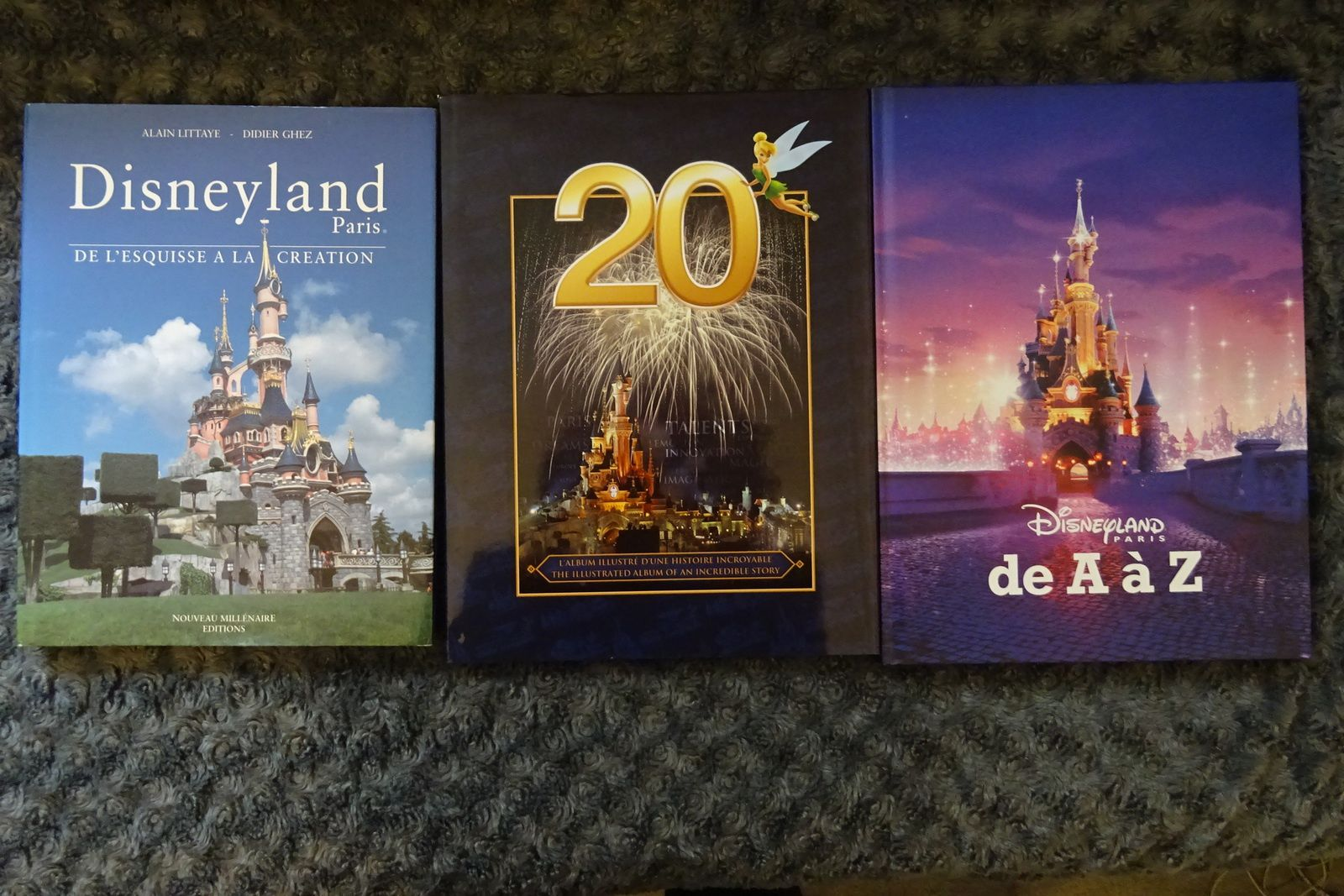 Disneyland Paris En Lecture Les Experiences De Tonksounette