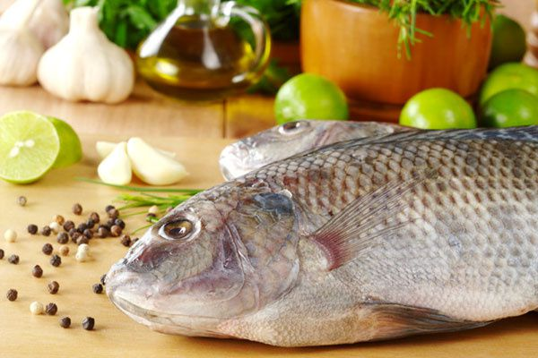 How to Cook Fish: the Various Cooking Methods for Fish