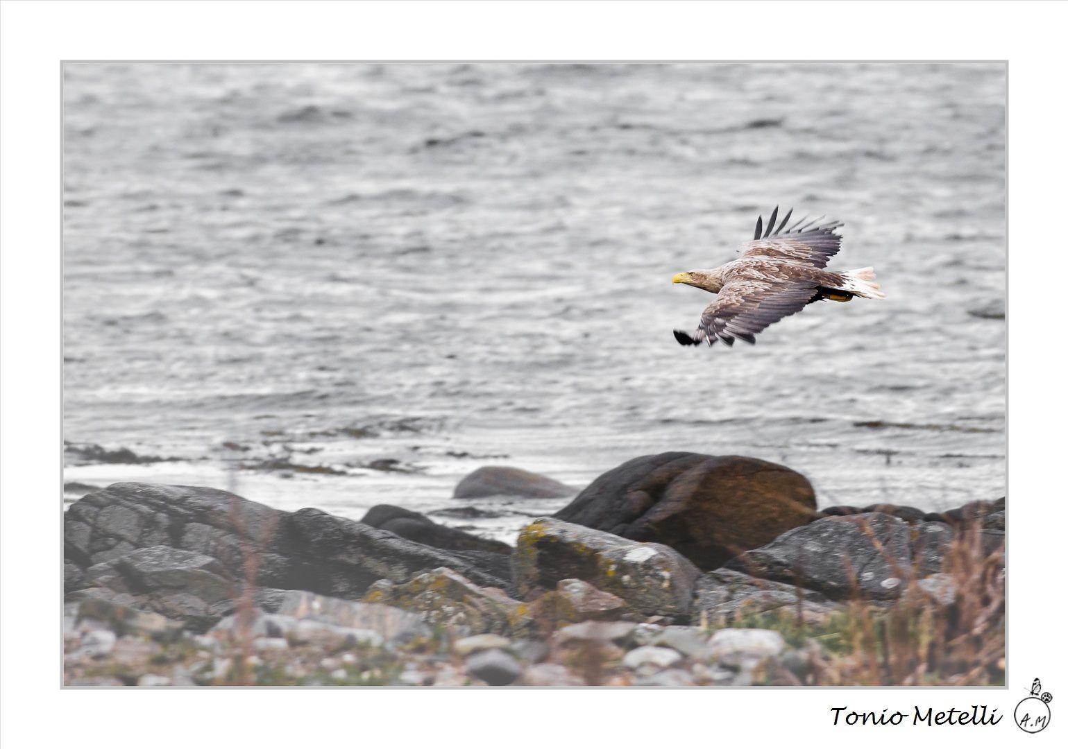 Au coeur des fjords