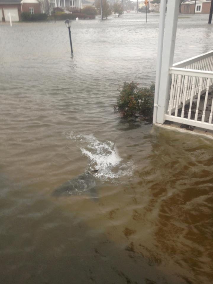 Ouragan à New York : attention aux fausses images sur les réseaux sociaux !