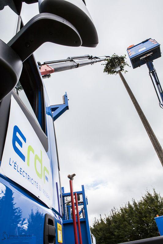 Partenariat ERDF/LPO, installation d'une plateforme pour cigognes blanches à Potelle