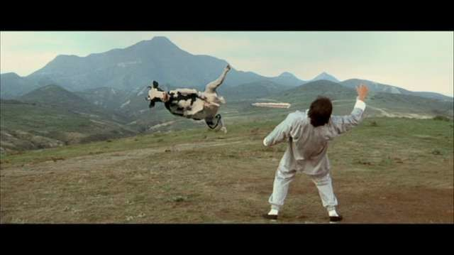 Vidéo vache de combat (satire de Matrix et films de Bruce Lee)