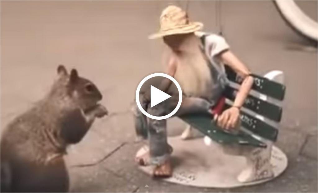 Vidéo d'un sdf en marionnette