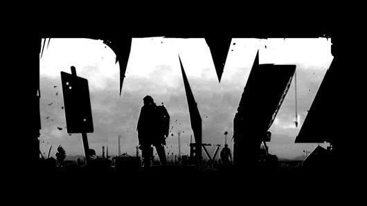dayz launcher how to use