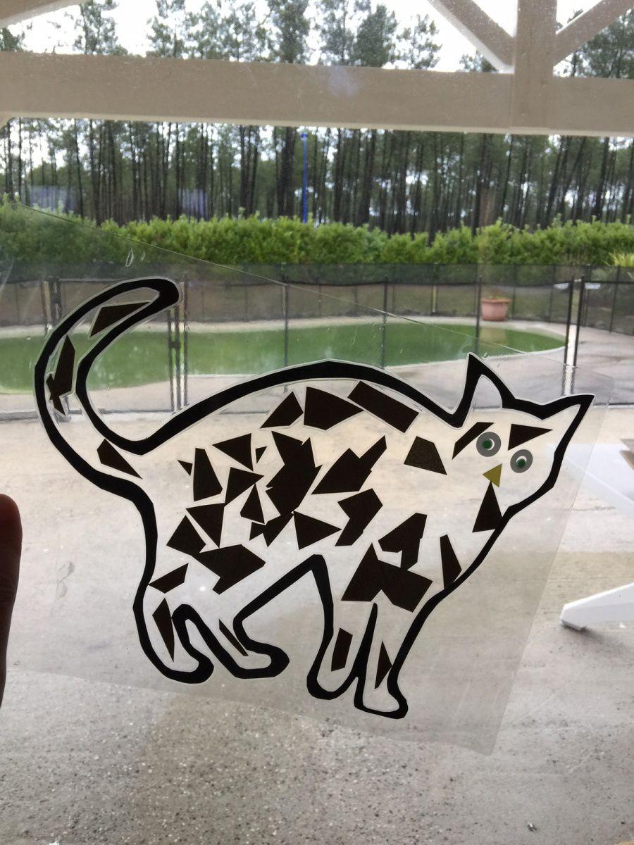 Un chat sur les vitres !
