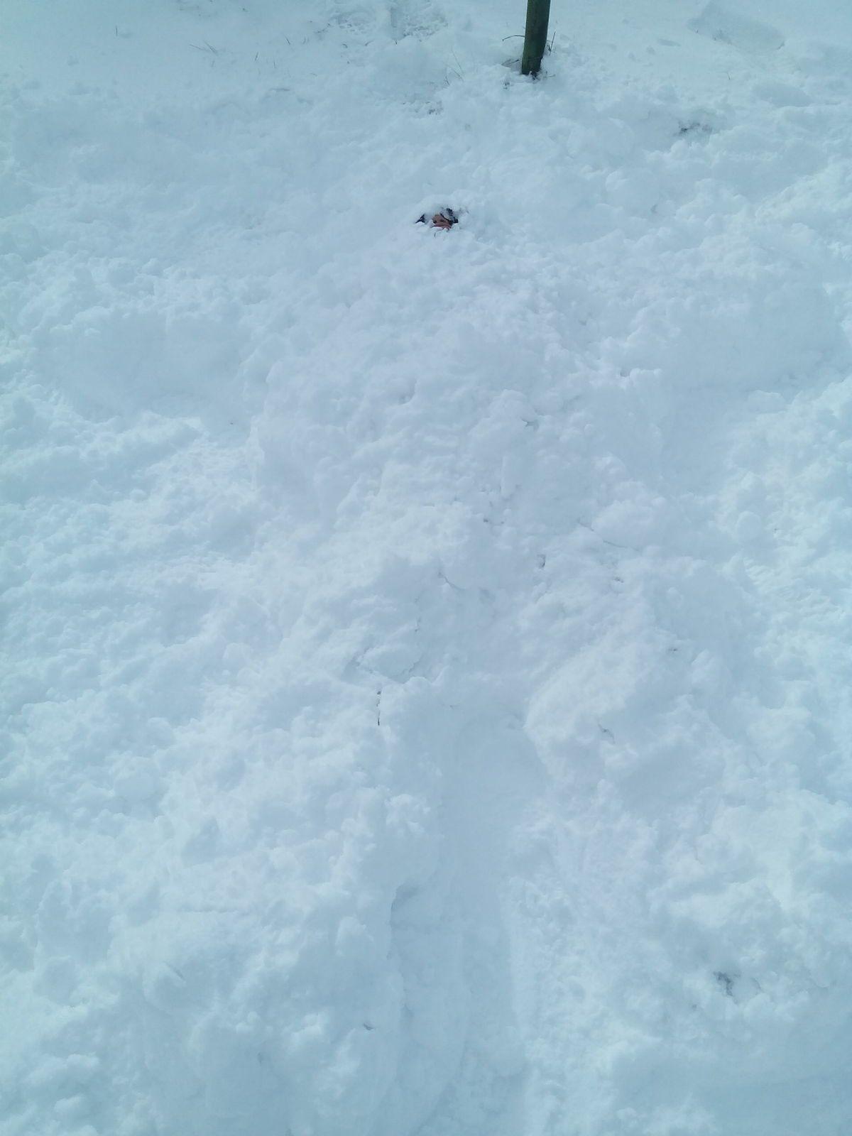 Rugby, batailles de boules de neige, bonhommes de neige.... :-)