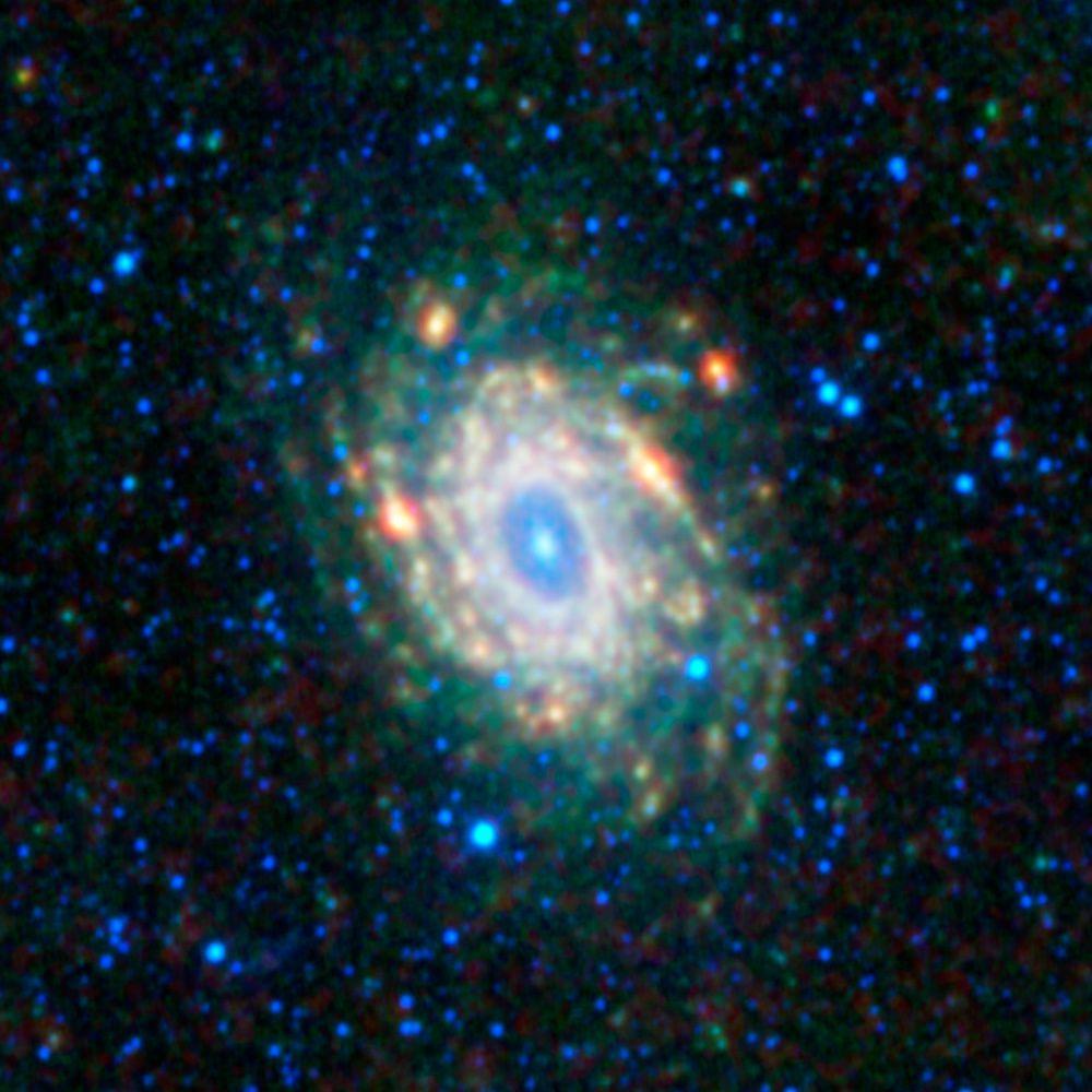 NGC 6744 osservata nell'infrarosso dal telescopio spaziale WISE (vedi in alta risoluzione). I colori verde e rosso indicano aree di formazione stellare, ricche di polveri e localizzate per lo più nei bracci a spirale della galassia. Il verde codifica luce a 12 micron, il rosso luce a 22 micron. I colori blu e ciano sono associati invece alla luce stellare, ben più calda di quella proveniente dalle regioni ricche di polveri e gas. Il blu codifica la luce a 3,4 micron, il ciano la luce a 4,6 micron. Cortesia: NASA/JPL-Caltech/WISE Team