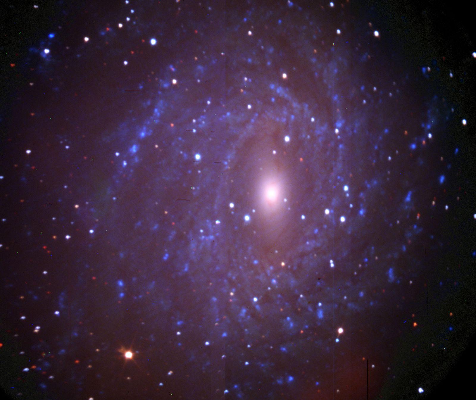 """NGC 6744 osservata nel 2005 con il SALT, un telescopio da dieci metri nella Repubblica Sudafricana, il cui specchio è il più grande dell'emisfero australe. L'immagine è una composizione di tre esposizioni di soli dieci secondi ognuna, con i filtri ultravioletto, blu e infrarosso, per di più in una situazione resa complicata dalla presenza della Luna, illuminata al 40 per cento (<a href=""""http://www.salt.ac.za/fileadmin/files/telescope/first_light/ngc6744UBI.jpg"""" target=""""_blank"""">vedi in alta risoluzione</a>). Cortesia: SALT / SAAO"""