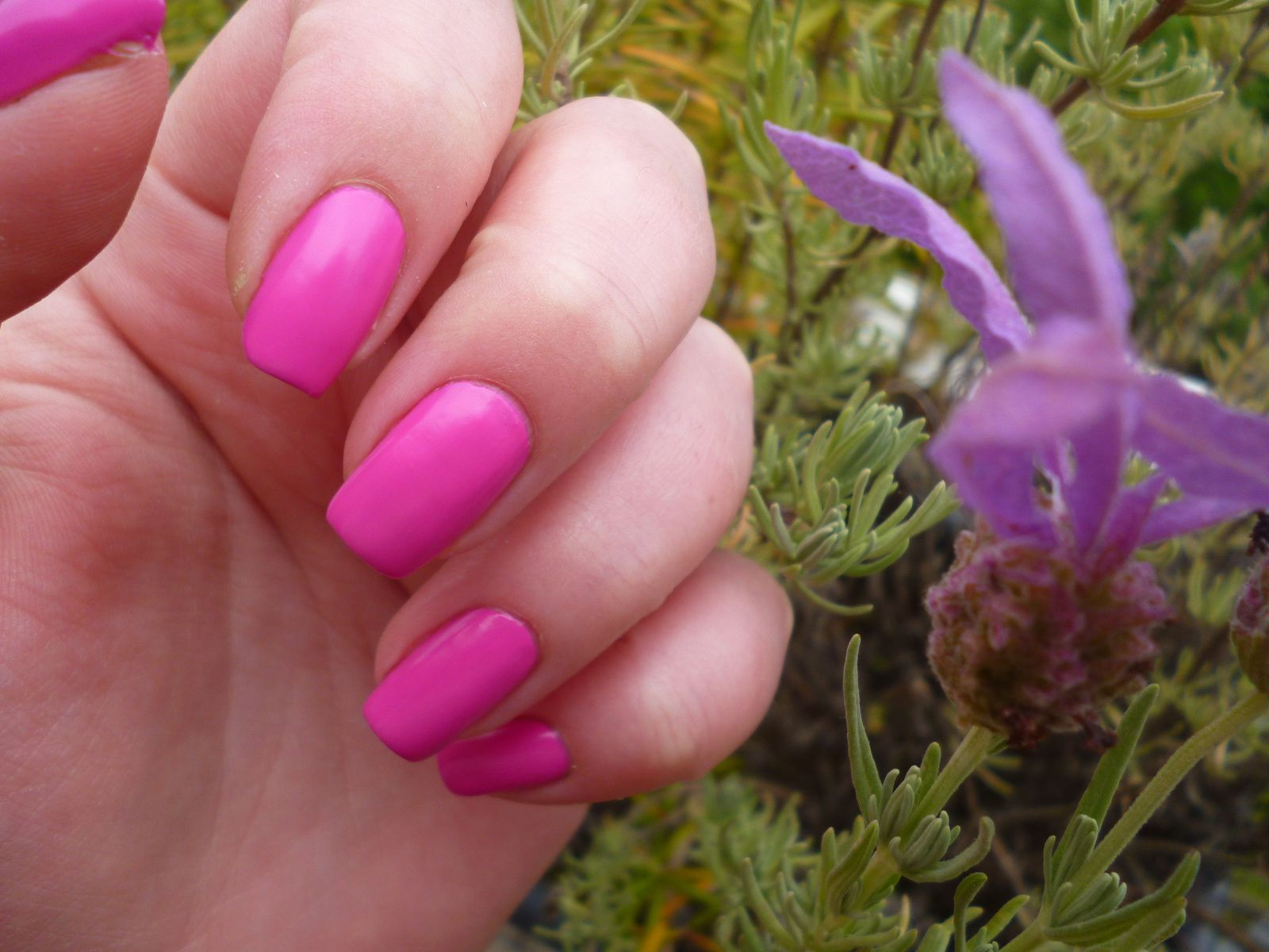 MY EXTREM VERNIS JUNGLE PINK - Beautynails