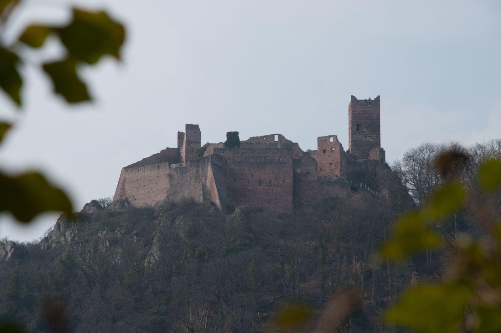 le St Ulrich