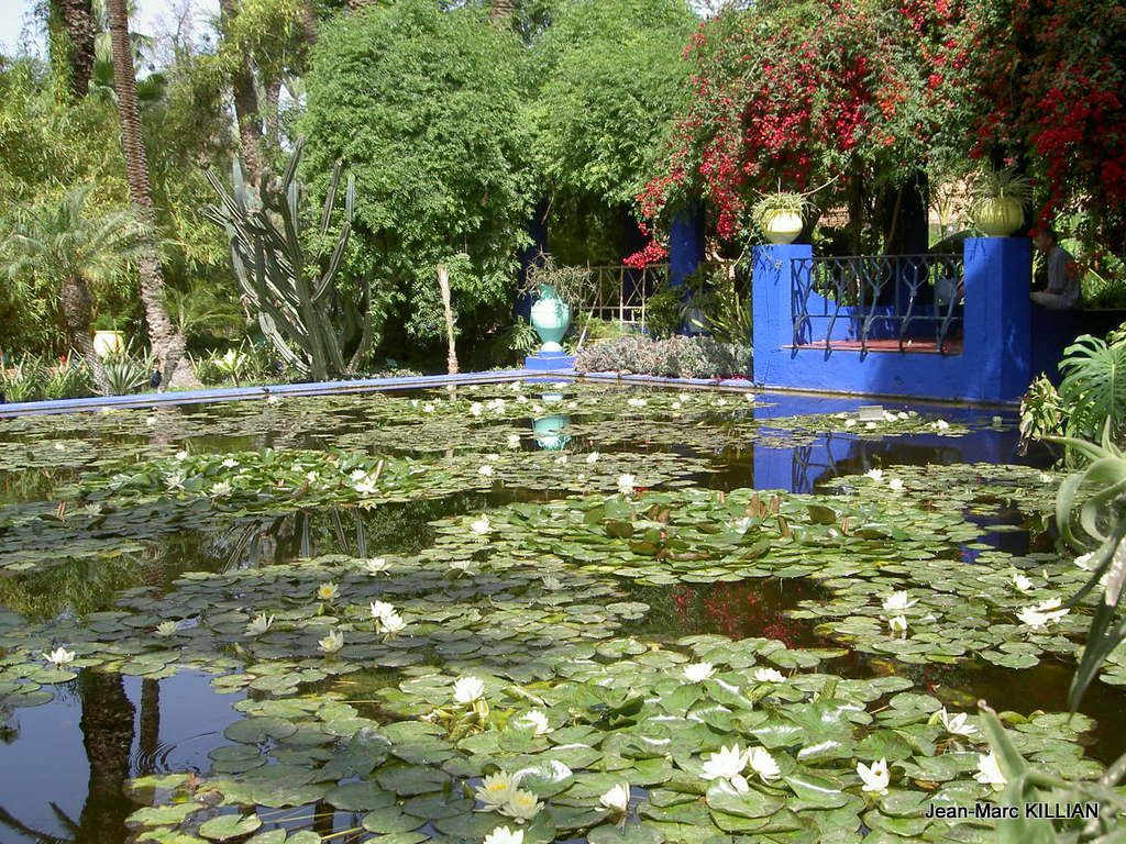 Bienvenue au jardin majorelle jean marc killian for Bienvenue au jardin