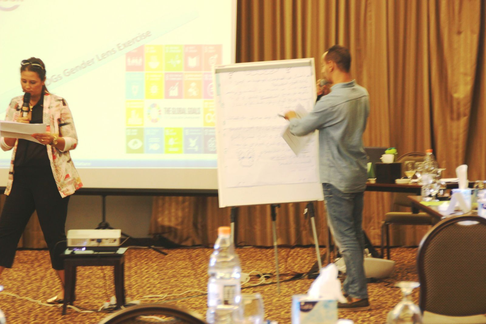 Fifth Regional Summer School in Corp Amman Hotel –Jordan. This Summer School orgenized by Heinrich Böll Foundation focused on Sustainable Development Goals (SDGs) and their approach to achieve gender- just sustainable development.