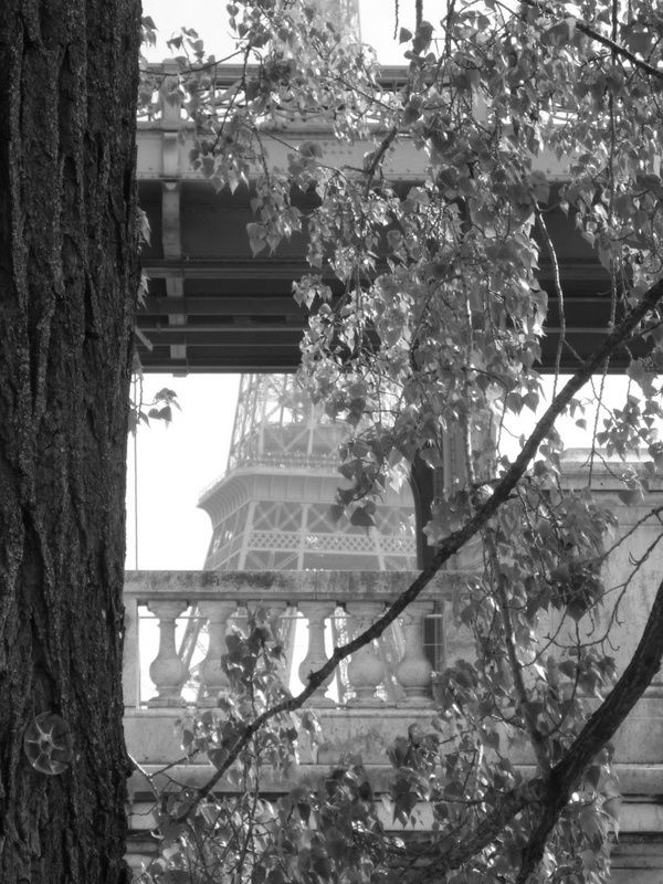 Promenade dans Paris - 28 avril 2013