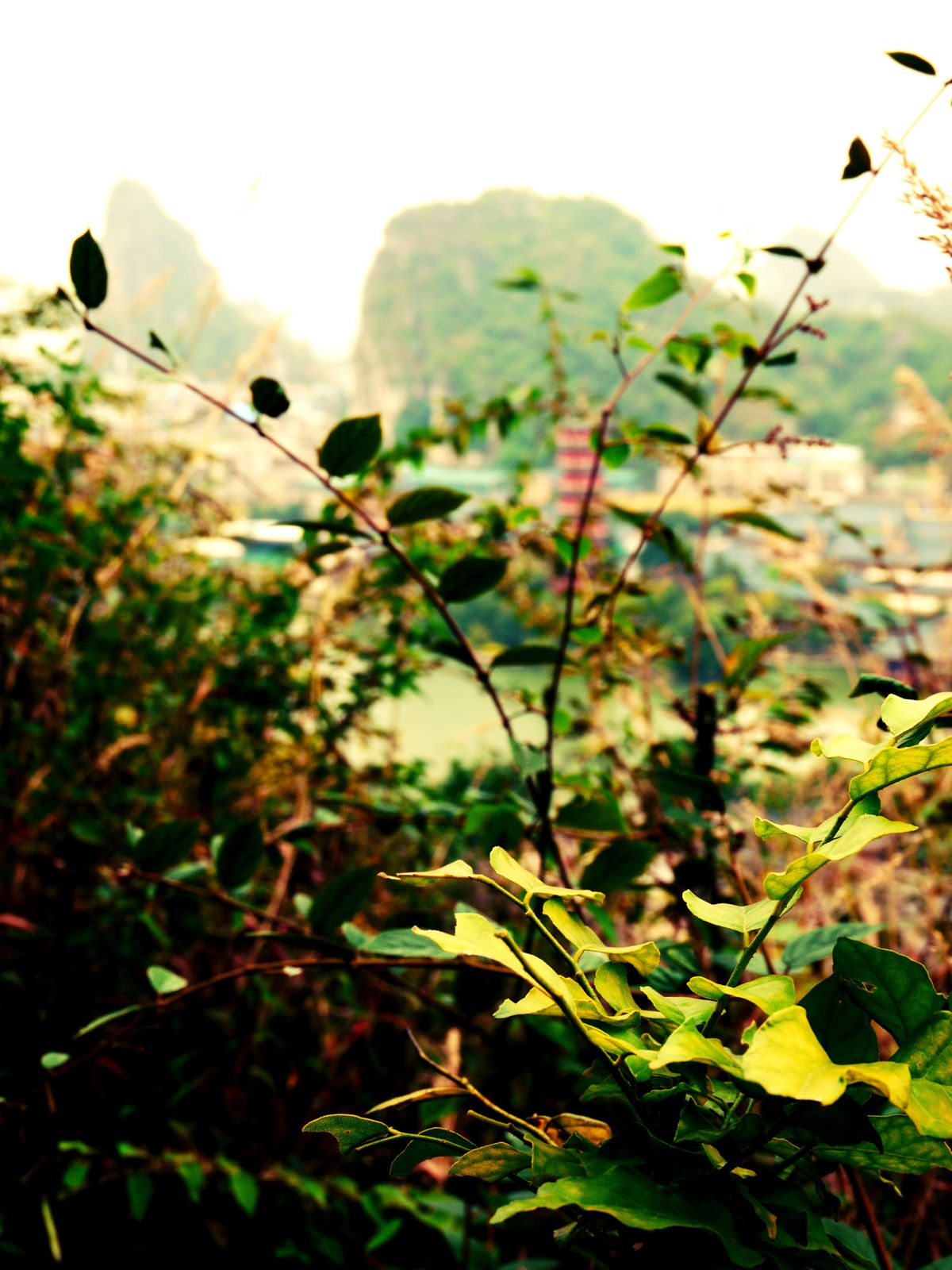 Guilin (Guangxi) - China