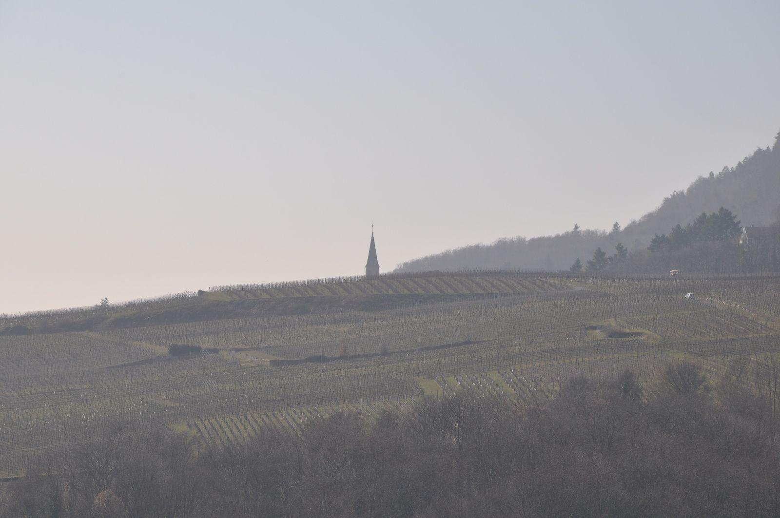 Vues sur Colmar ,les vignes et les 3 châteaux .