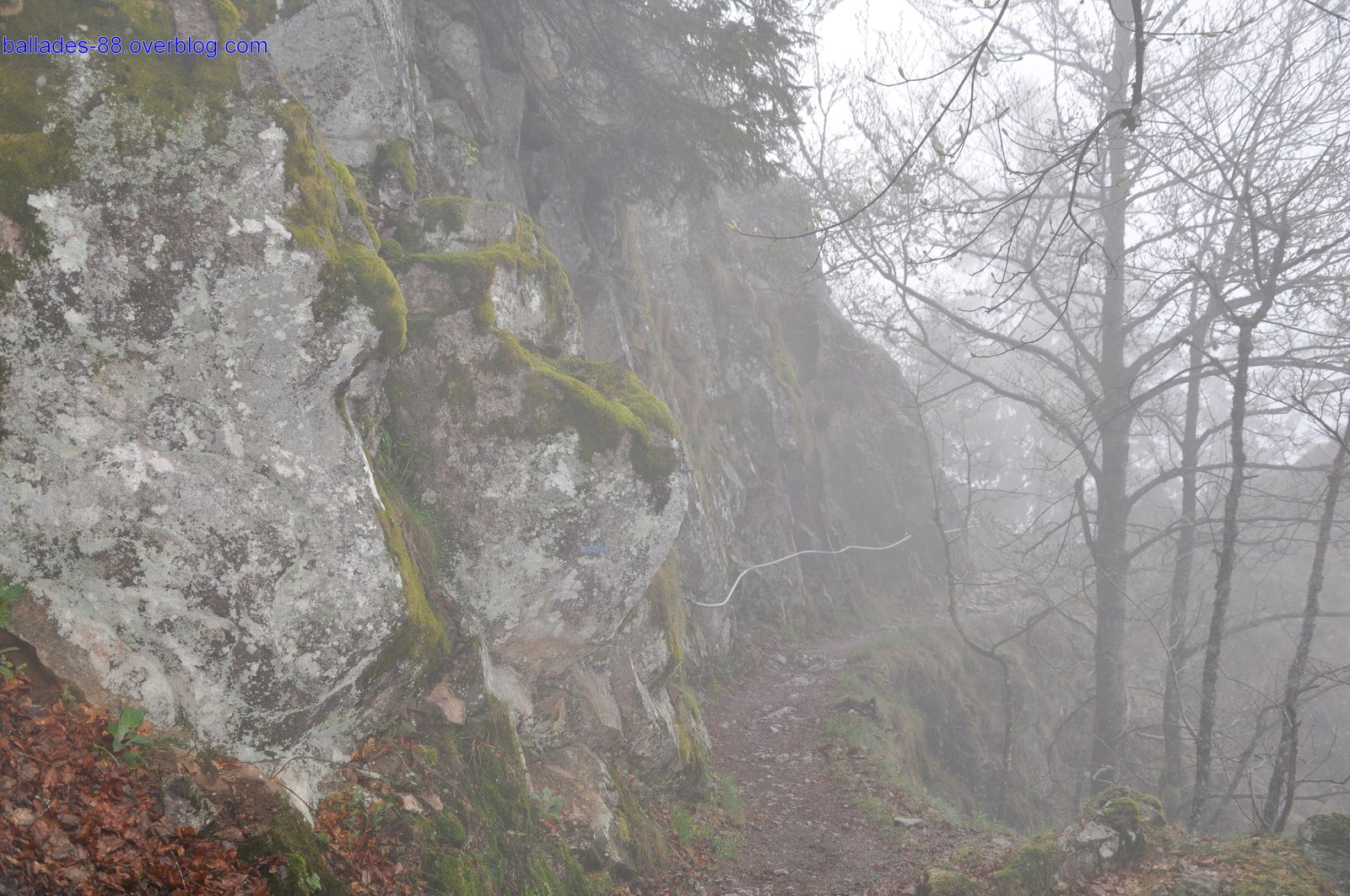 Sentier des roches.