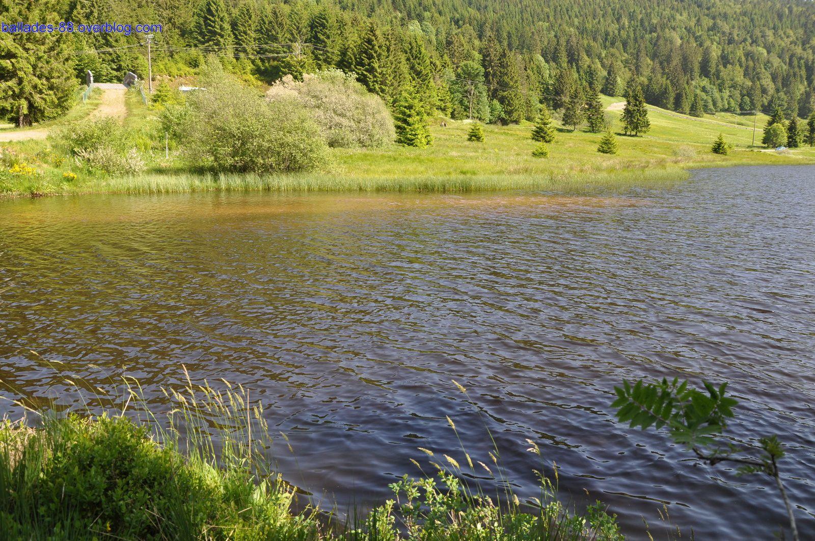 Lac de la Ténine
