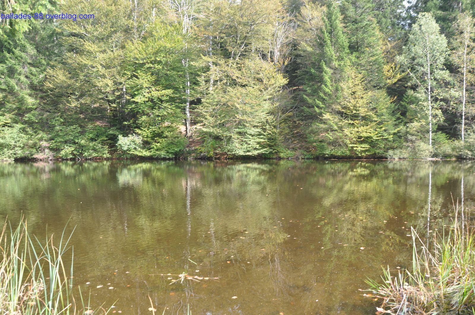 Un des nombreux étangs du coin avec son superbe chalet en rondins.
