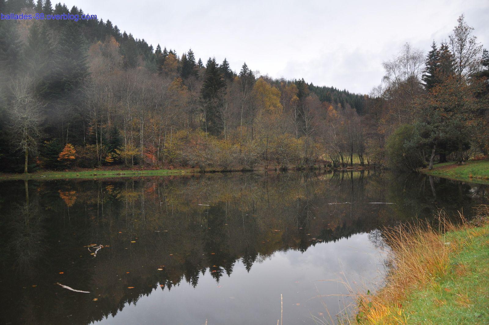 Étang du Frac Fresse sur Moselle.