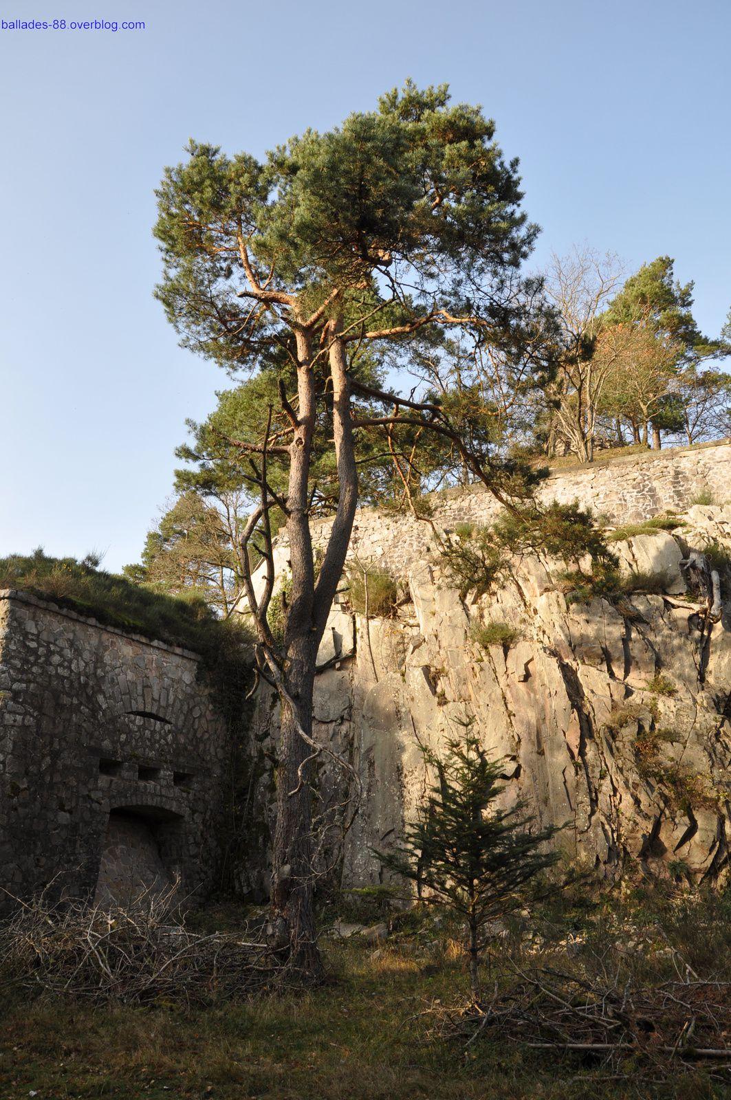 Fort du Parmont.