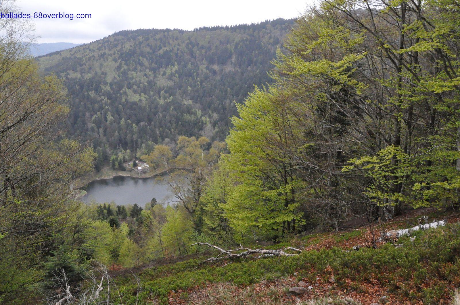 Weekend randonnée à Fresse sur Moselle