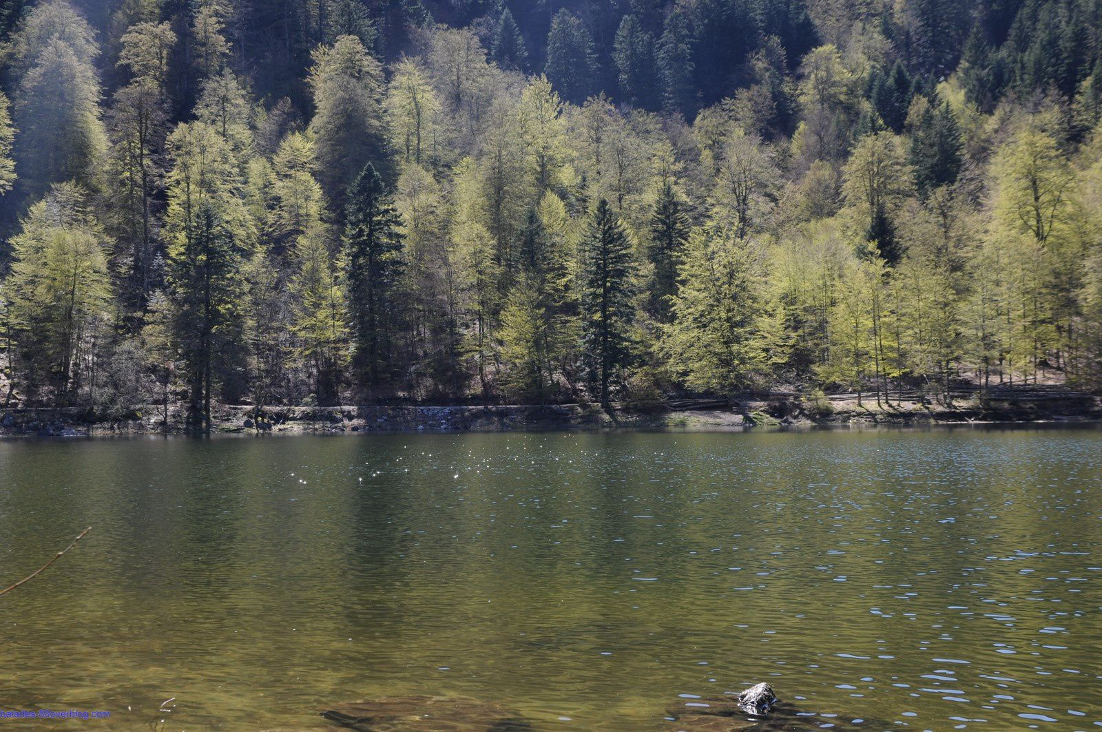 Lac des Corbeaux 4 mai 2016